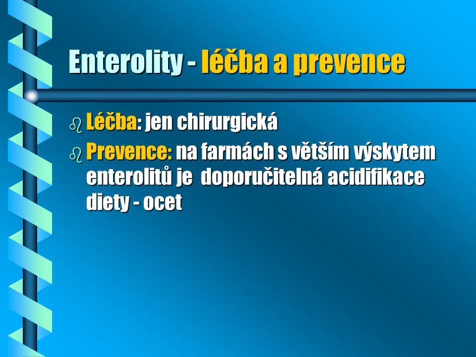 Enterolity - léčba a prevence