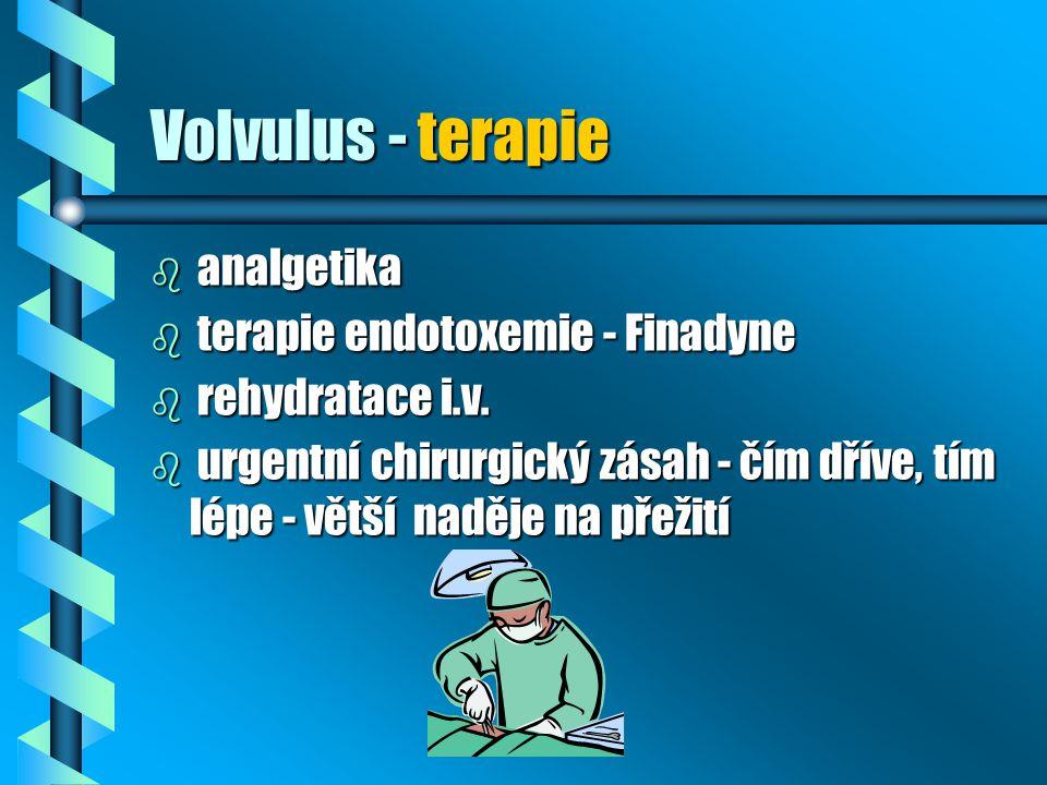 Volvulus - terapie analgetika terapie endotoxemie - Finadyne