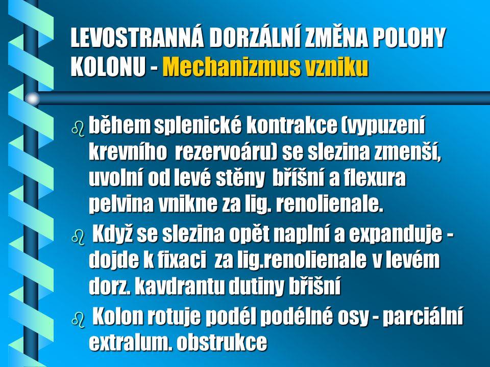 LEVOSTRANNÁ DORZÁLNÍ ZMĚNA POLOHY KOLONU - Mechanizmus vzniku