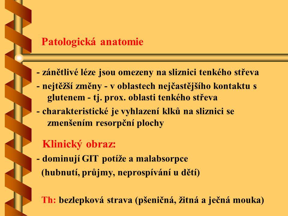 Patologická anatomie Klinický obraz:
