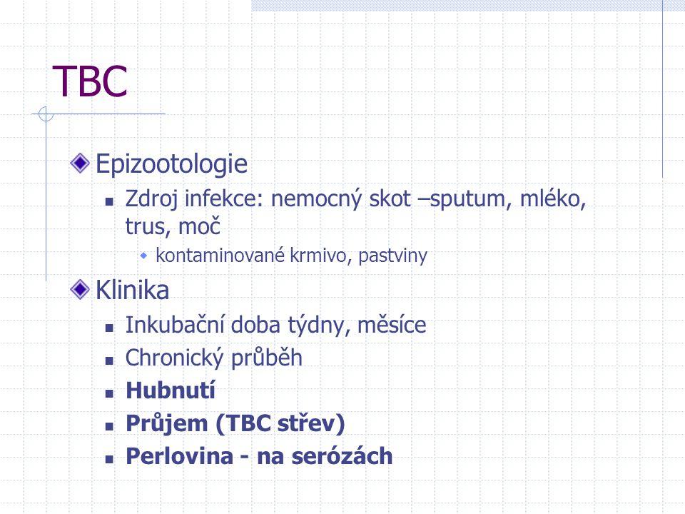 TBC Epizootologie Klinika