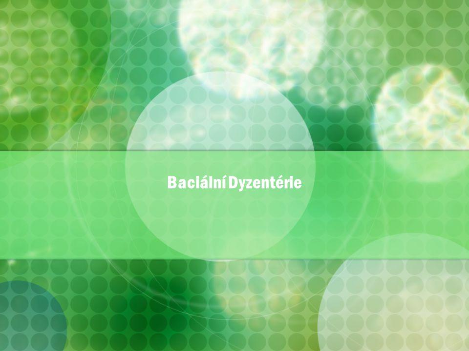 Baciální Dyzentérie