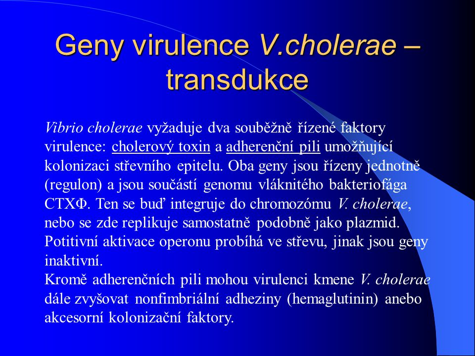 Geny virulence V.cholerae – transdukce