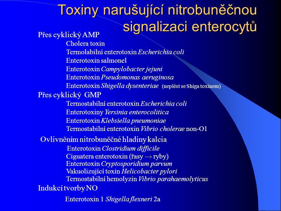 Toxiny narušující nitrobuněčnou signalizaci enterocytů