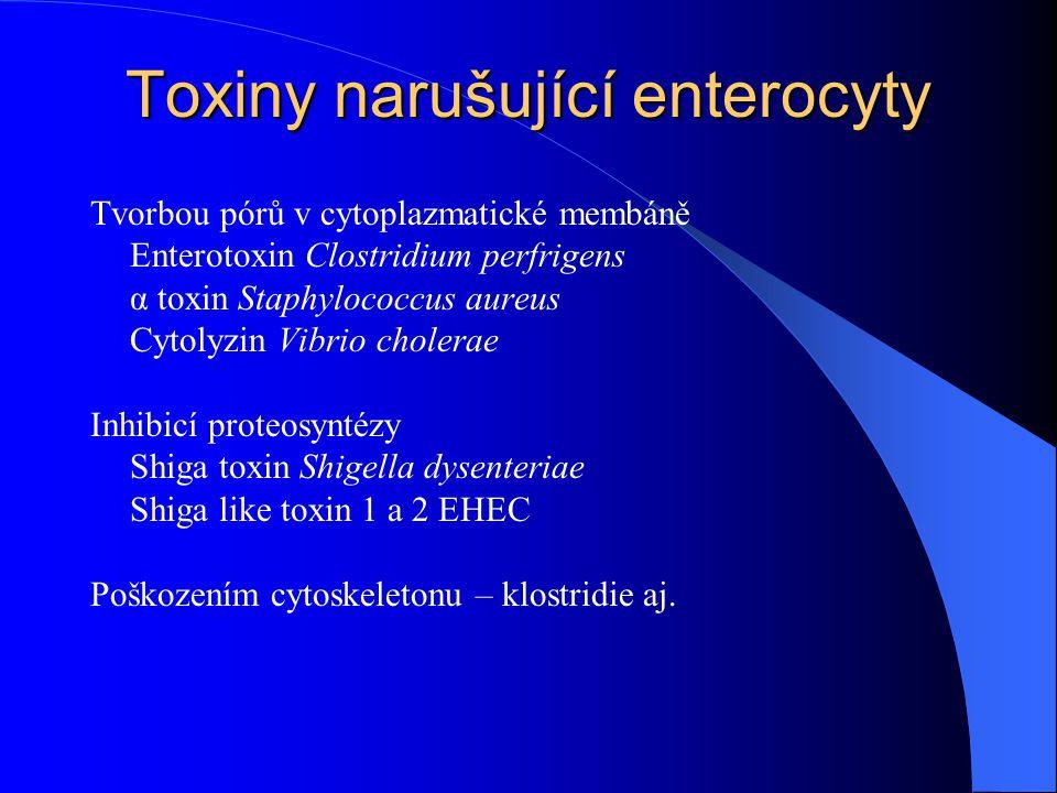 Toxiny narušující enterocyty