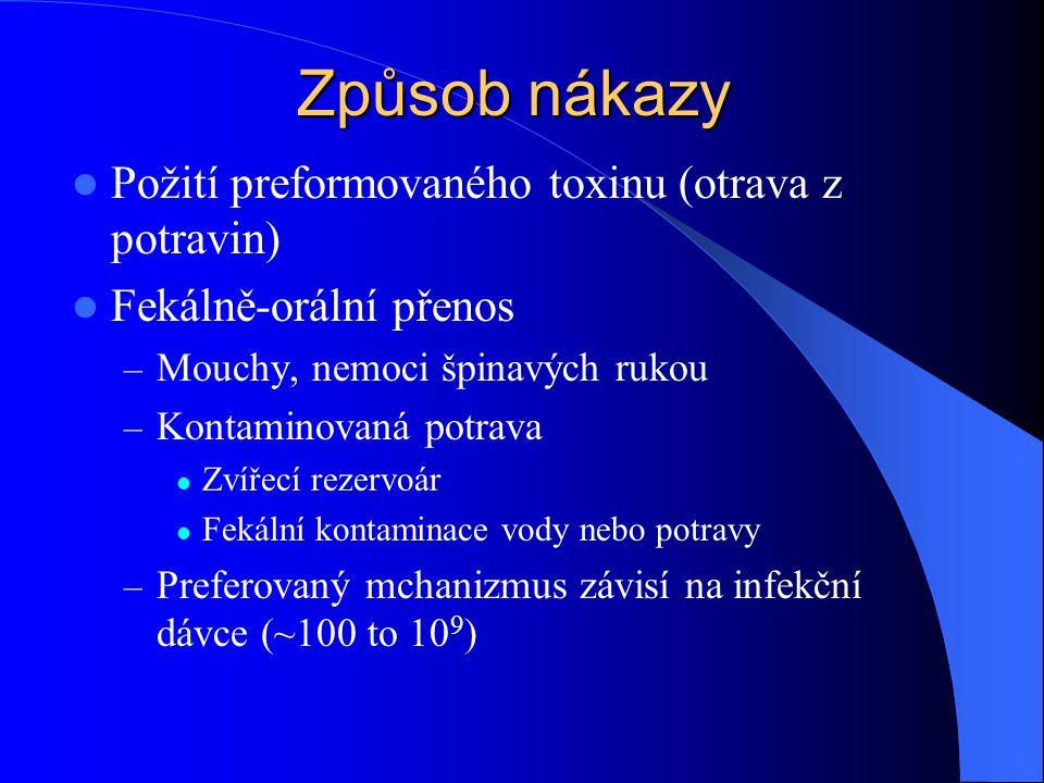 Způsob nákazy Požití preformovaného toxinu (otrava z potravin)