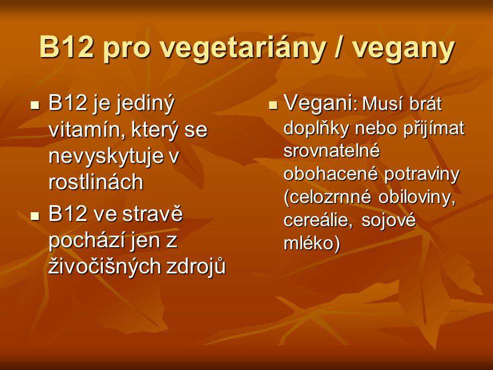 B12 pro vegetariány / vegany