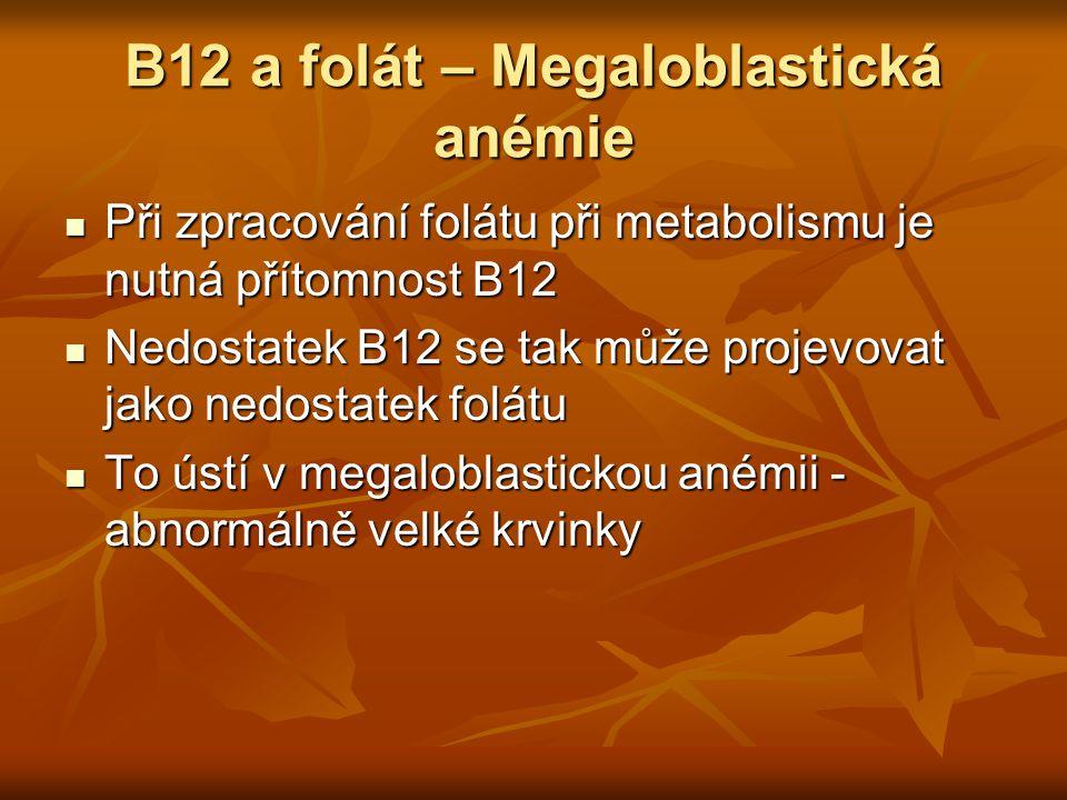B12 a folát – Megaloblastická anémie