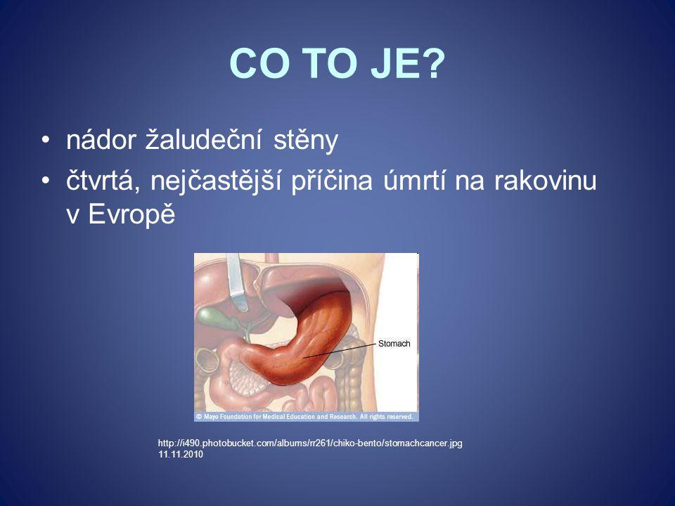 CO TO JE nádor žaludeční stěny