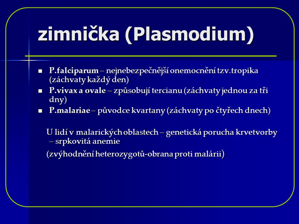 zimnička (Plasmodium)