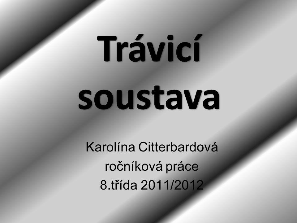 Karolína Citterbardová ročníková práce 8.třída 2011/2012