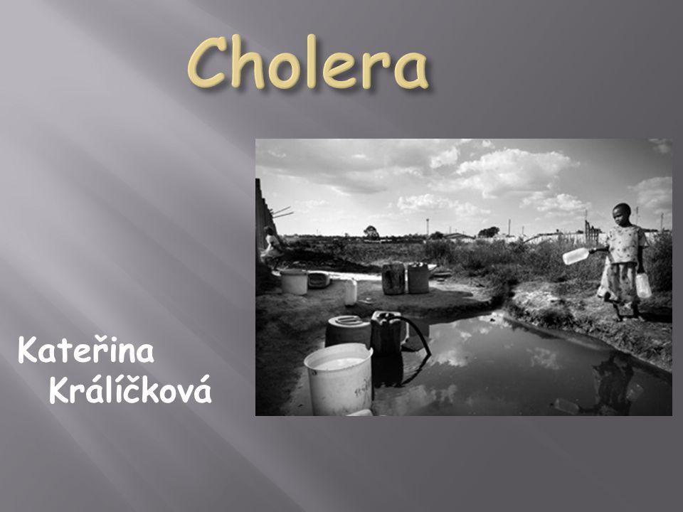 Cholera Kateřina Králíčková