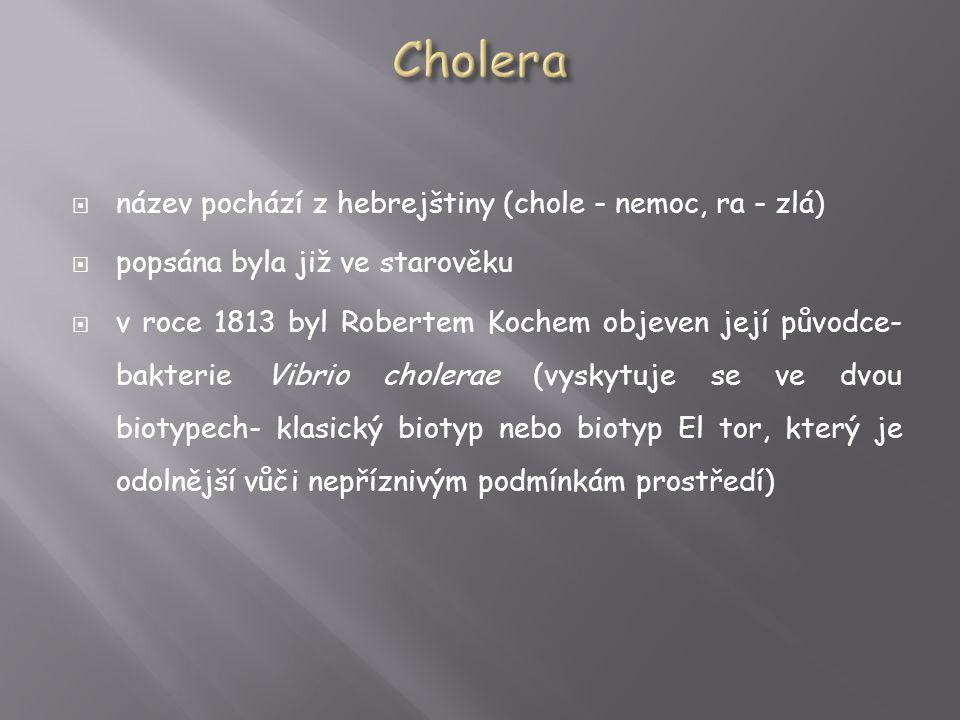 Cholera název pochází z hebrejštiny (chole - nemoc, ra - zlá)