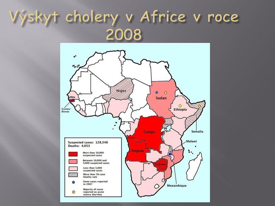 Výskyt cholery v Africe v roce 2008