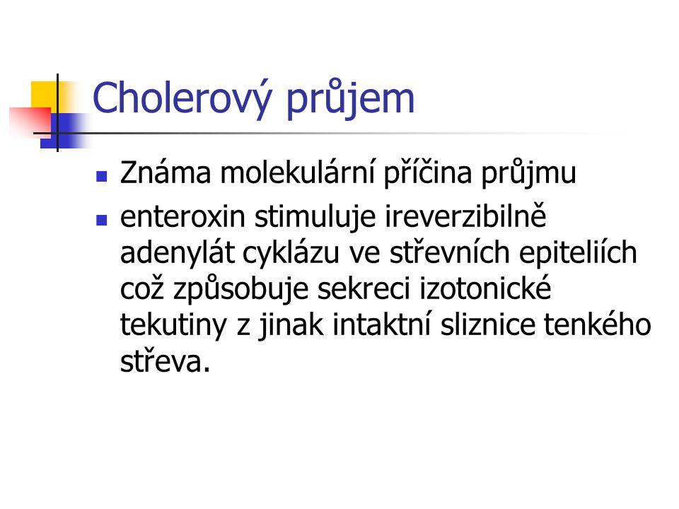 Cholerový průjem Známa molekulární příčina průjmu