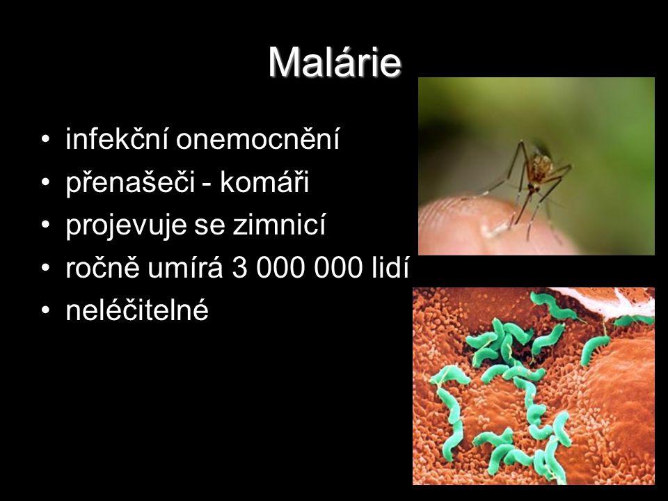 Malárie infekční onemocnění přenašeči - komáři projevuje se zimnicí