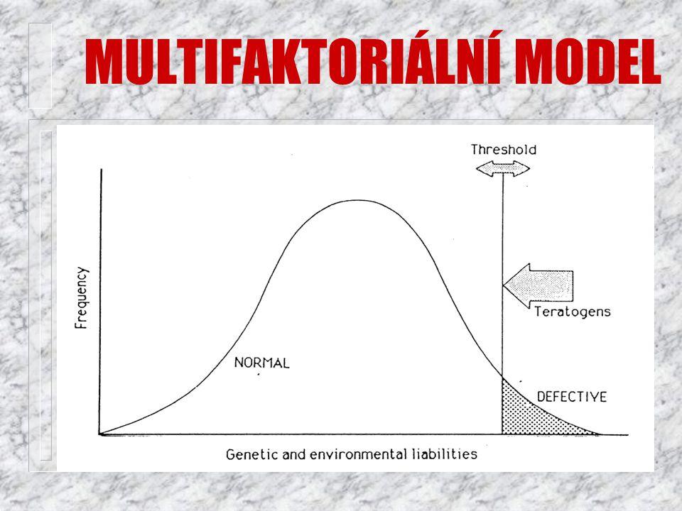 MULTIFAKTORIÁLNÍ MODEL