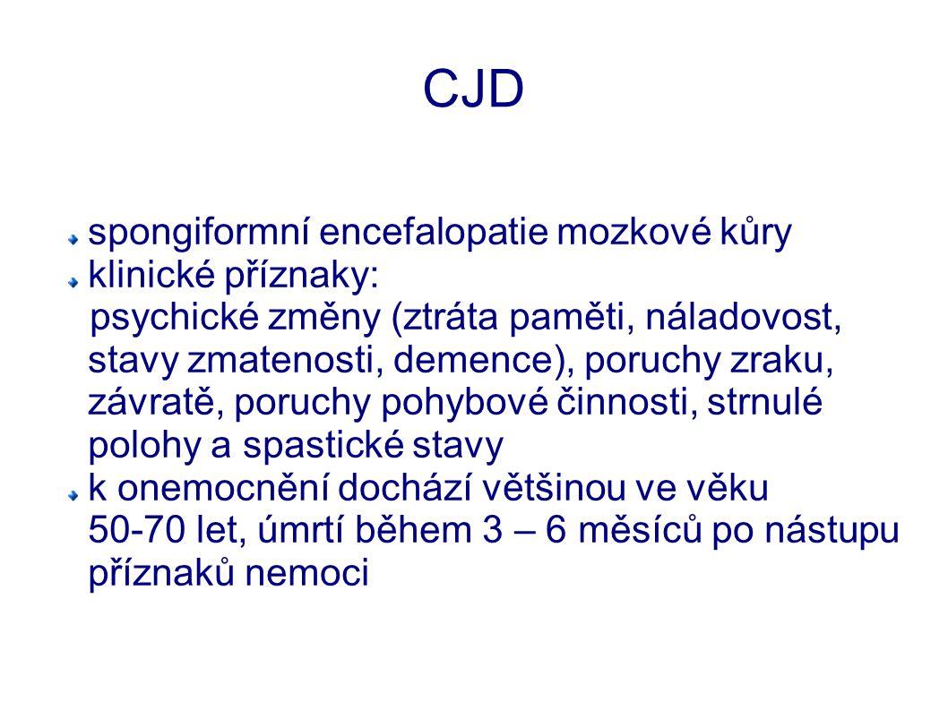 CJD spongiformní encefalopatie mozkové kůry klinické příznaky: