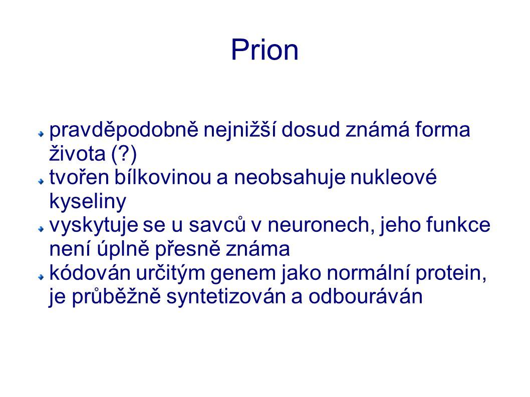 Prion pravděpodobně nejnižší dosud známá forma života ( )
