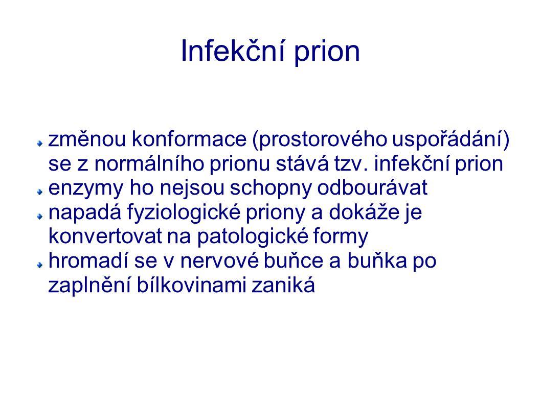 Infekční prion změnou konformace (prostorového uspořádání) se z normálního prionu stává tzv. infekční prion.