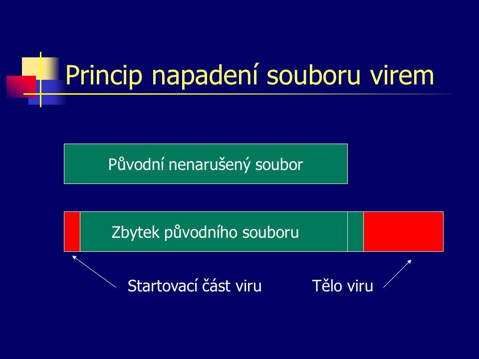 Princip napadení souboru virem