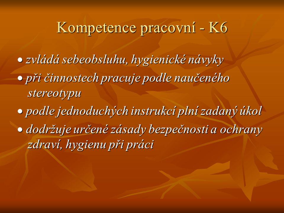 Kompetence pracovní - K6