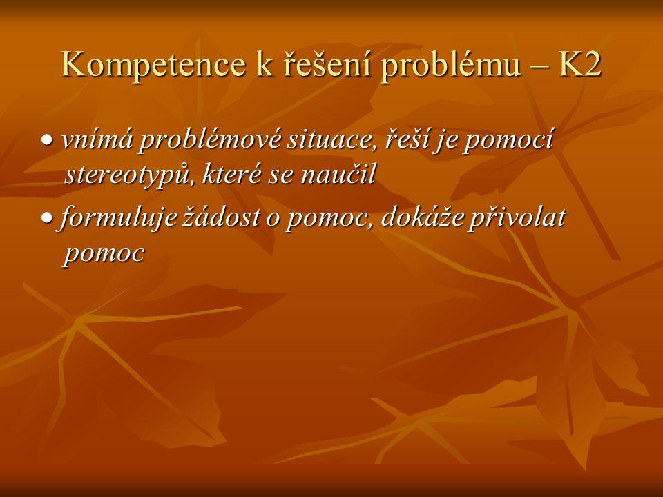 Kompetence k řešení problému – K2
