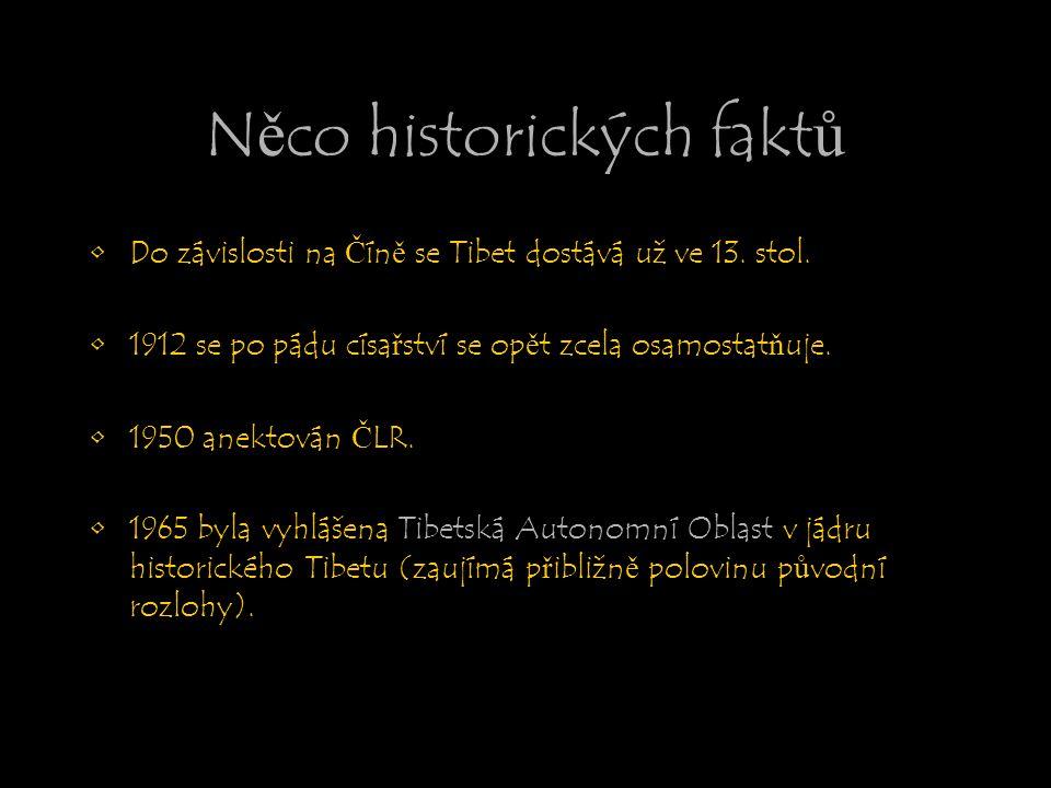 Něco historických faktů