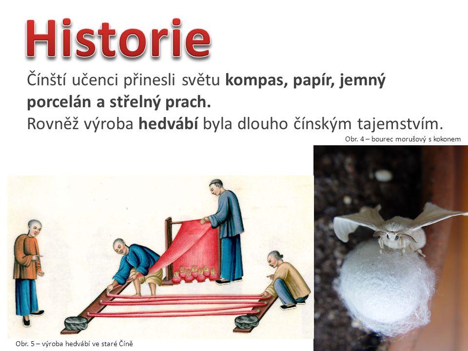 Historie Čínští učenci přinesli světu kompas, papír, jemný porcelán a střelný prach. Rovněž výroba hedvábí byla dlouho čínským tajemstvím.