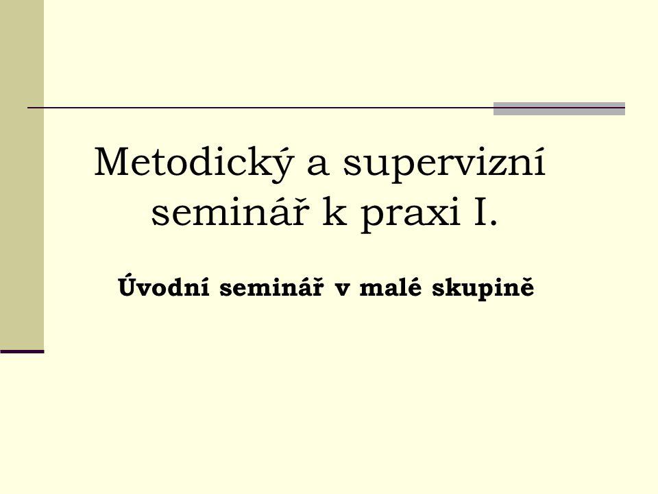 Metodický a supervizní seminář k praxi I.