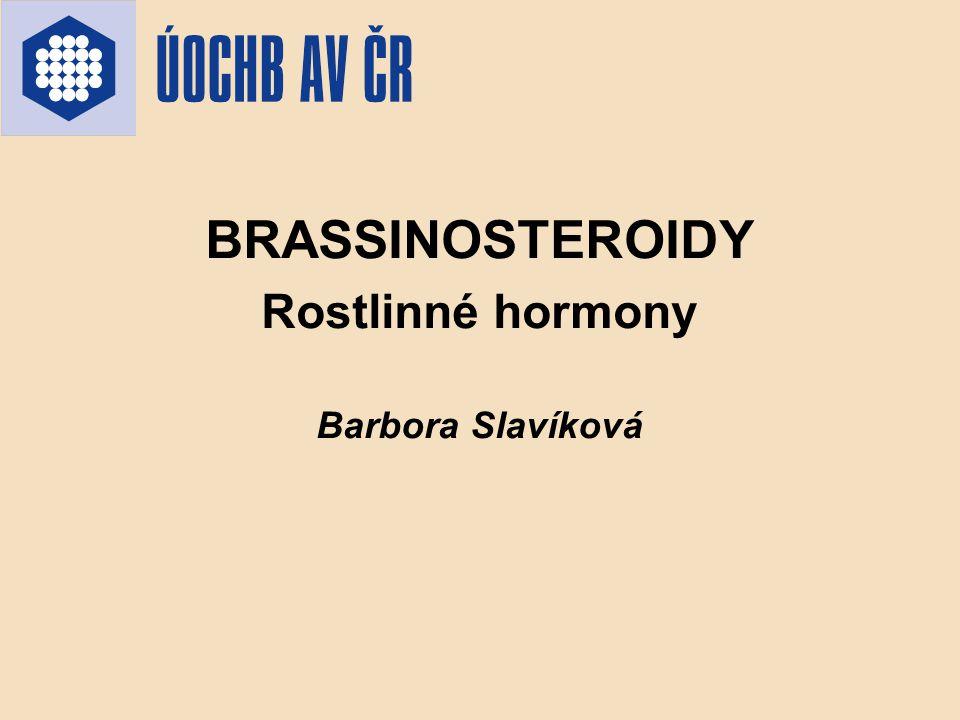 BRASSINOSTEROIDY Rostlinné hormony Barbora Slavíková