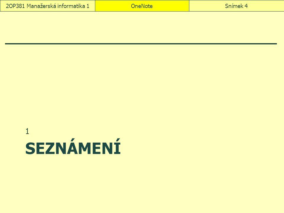 2OP381 Manažerská informatika 1