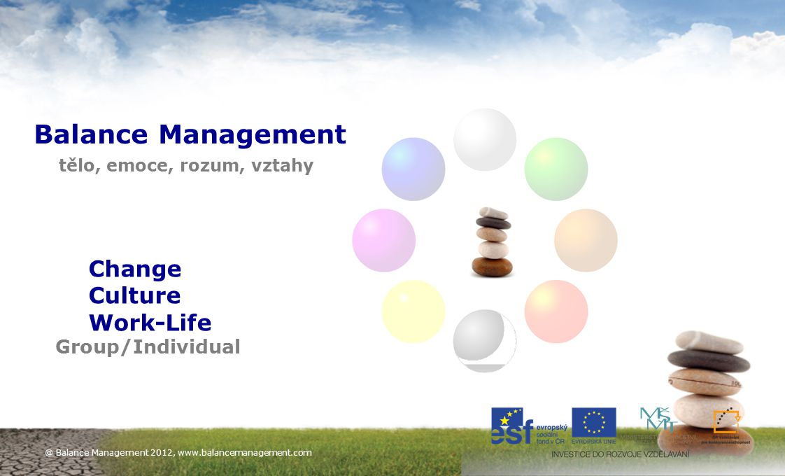 Balance Management Change Culture Work-Life Group/Individual