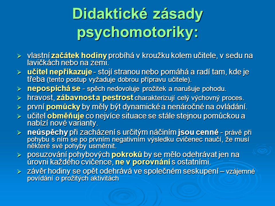 Didaktické zásady psychomotoriky: