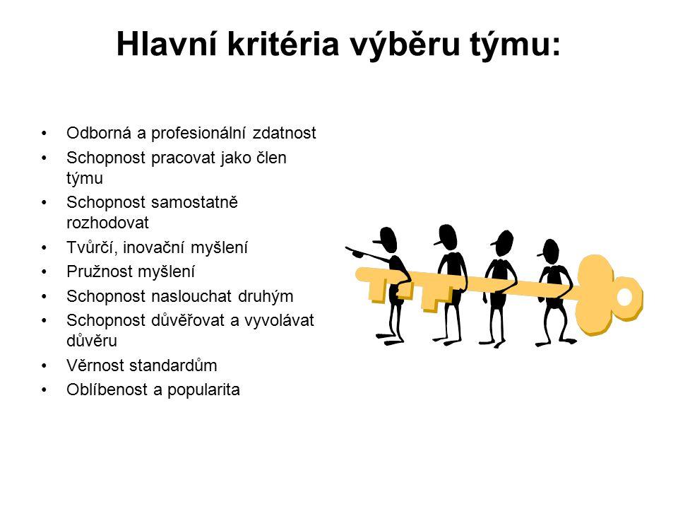 Hlavní kritéria výběru týmu: