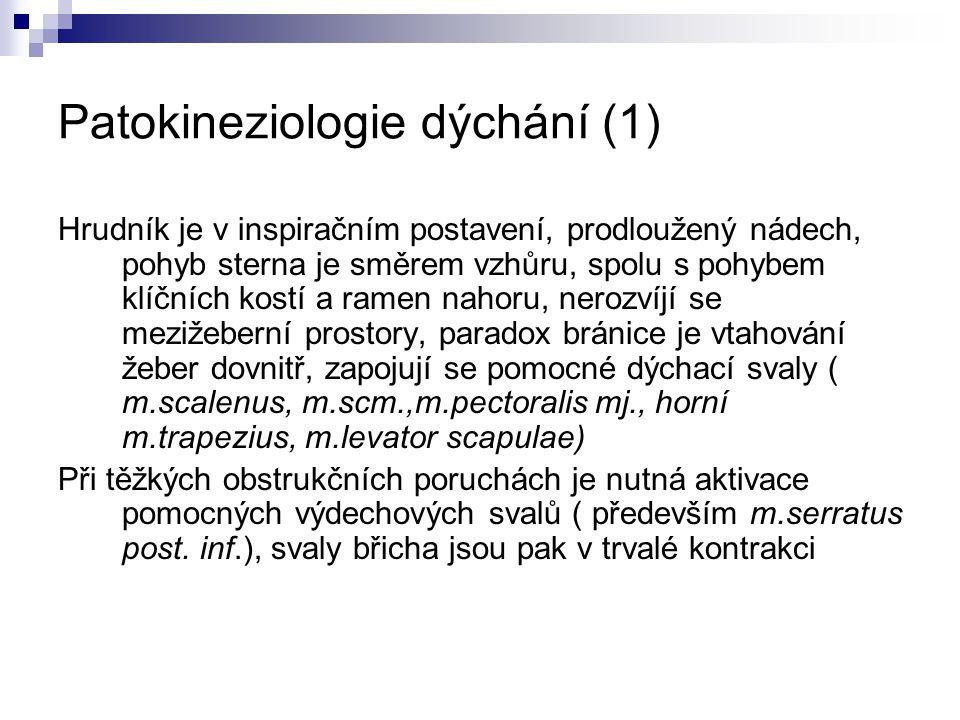 Patokineziologie dýchání (1)