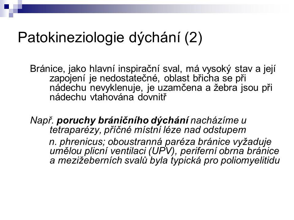 Patokineziologie dýchání (2)