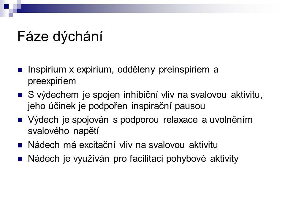 Fáze dýchání Inspirium x expirium, odděleny preinspiriem a preexpiriem