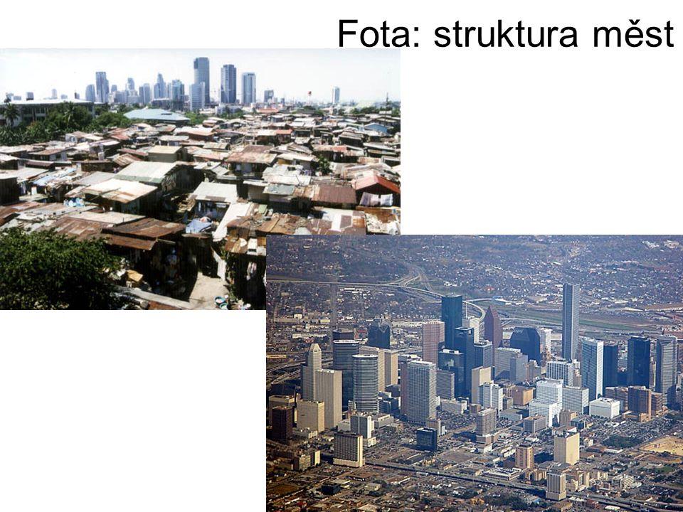 Fota: struktura měst