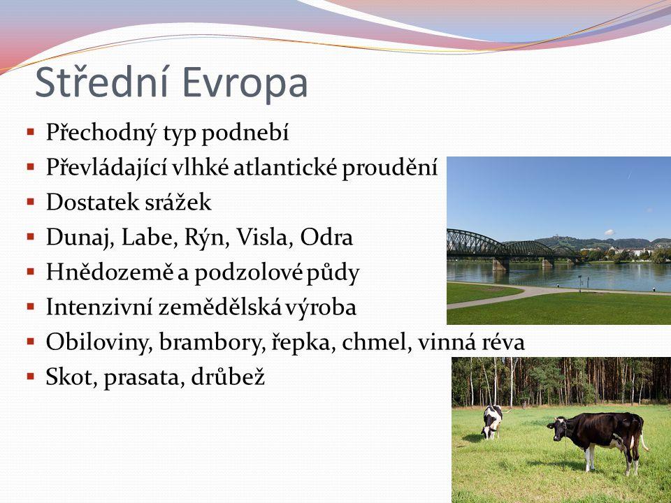 Střední Evropa Přechodný typ podnebí