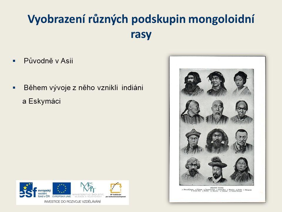 Vyobrazení různých podskupin mongoloidní rasy