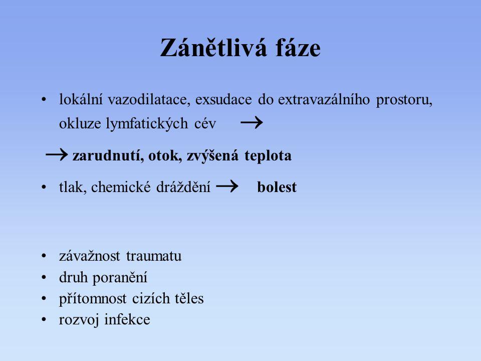 Zánětlivá fáze lokální vazodilatace, exsudace do extravazálního prostoru, okluze lymfatických cév 