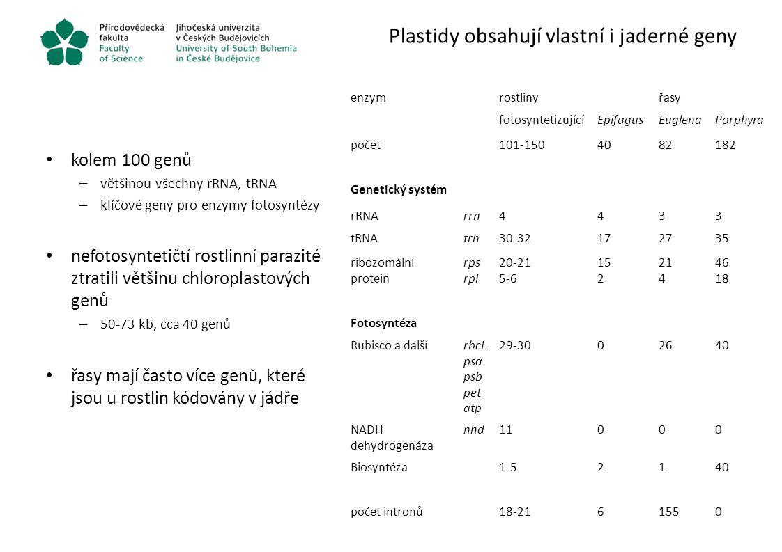 Plastidy obsahují vlastní i jaderné geny