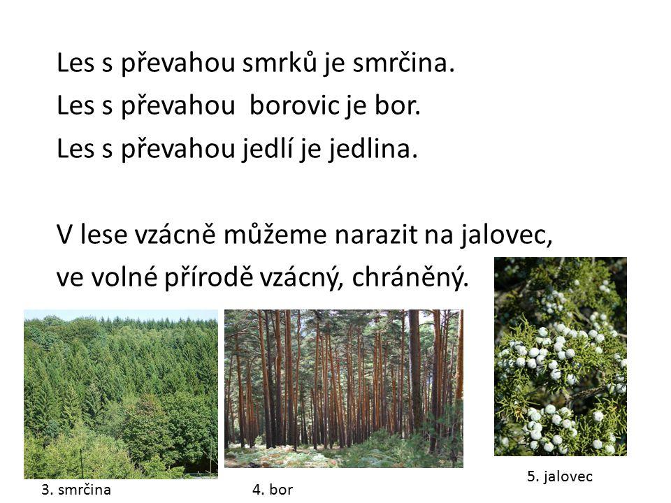 Les s převahou smrků je smrčina. Les s převahou borovic je bor
