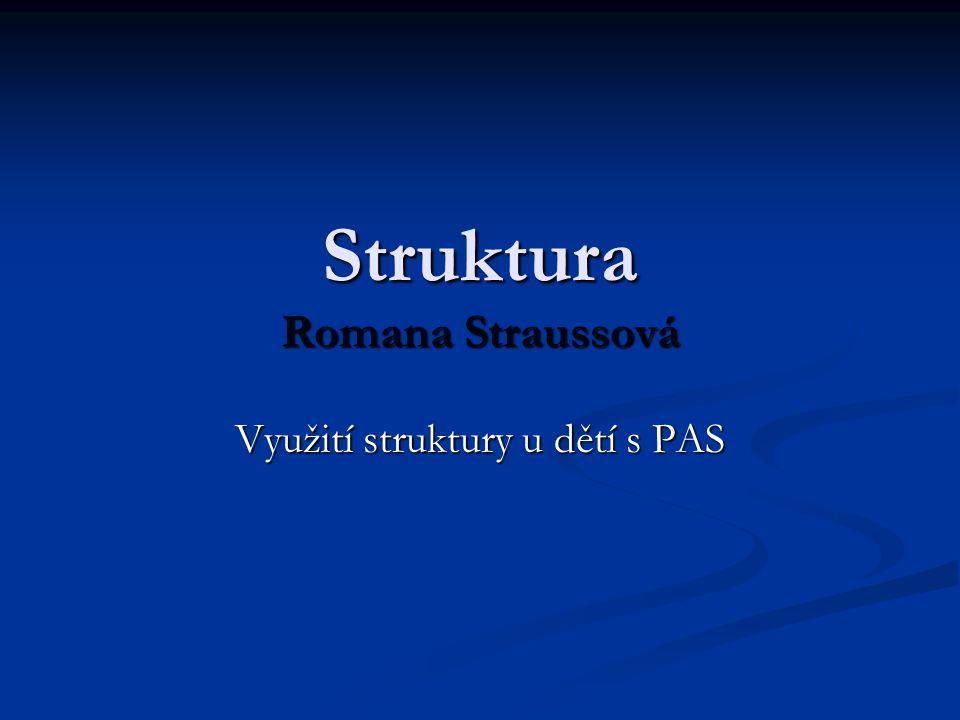Struktura Romana Straussová