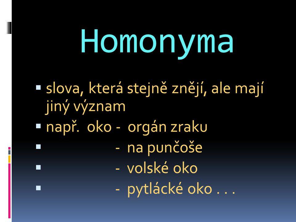 Homonyma slova, která stejně znějí, ale mají jiný význam
