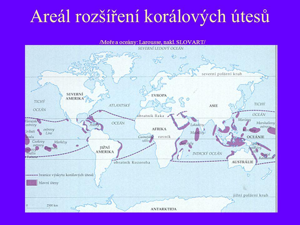 Areál rozšíření korálových útesů /Moře a oceány: Larousse, nakl