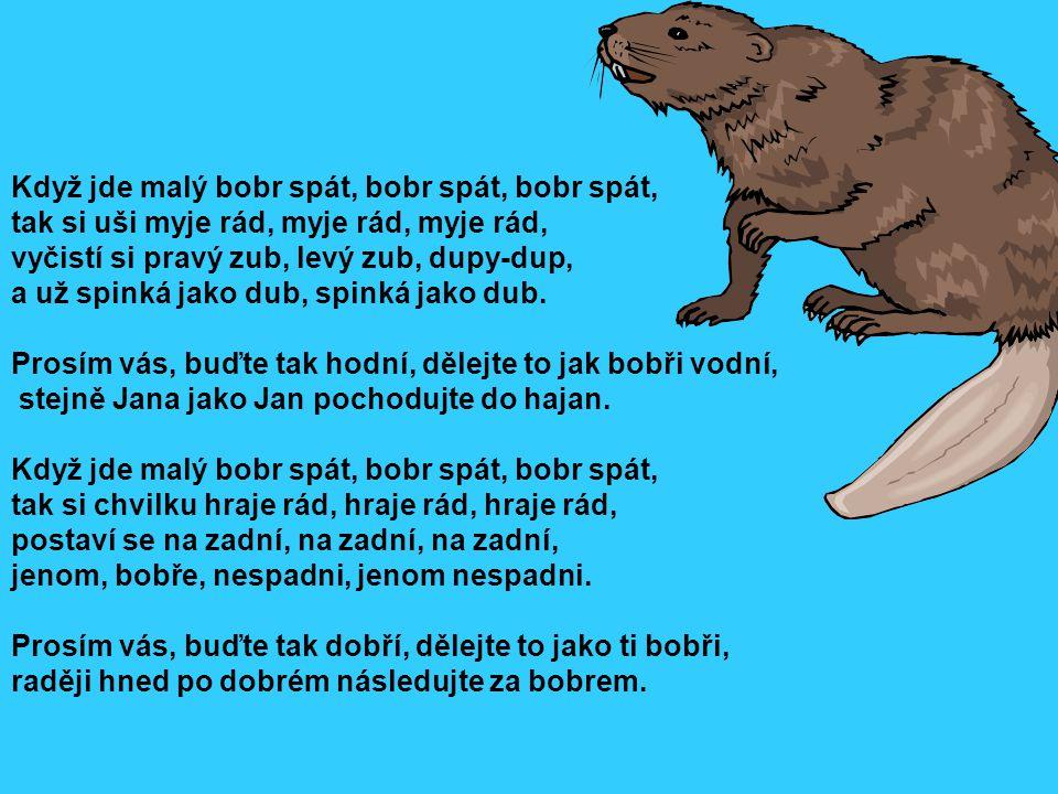 Když jde malý bobr spát, bobr spát, bobr spát, tak si uši myje rád, myje rád, myje rád, vyčistí si pravý zub, levý zub, dupy-dup, a už spinká jako dub, spinká jako dub. Prosím vás, buďte tak hodní, dělejte to jak bobři vodní,