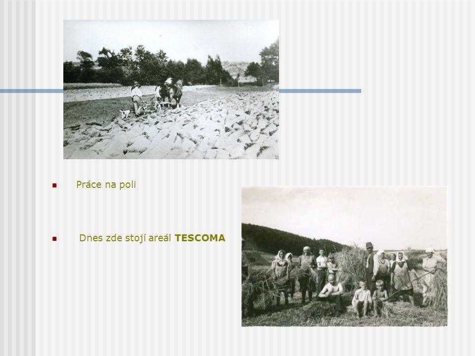 Práce na poli Dnes zde stojí areál TESCOMA