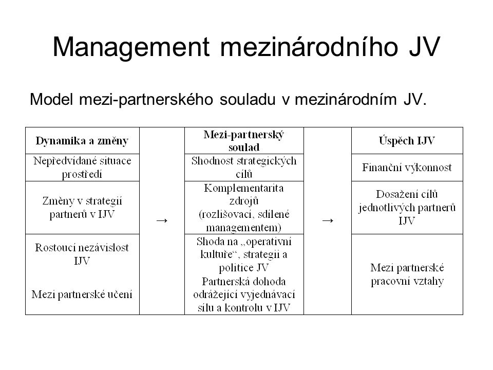 Management mezinárodního JV